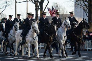 horses-parade